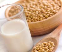 17 Alternativas a la leche de vaca