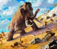 ¿Qué es la dieta Paleolítica o Paleodieta?