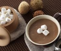 El cacao es beneficioso para el cerebro de los ancianos
